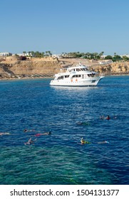 SHARM EL-SHEIKH, EGYPT -JULY 14, 2019: A group of tourists snorkeling and scuba diving in Red Sea, Sharm el Sheikh, Egypt