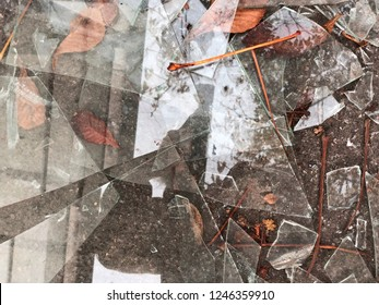 a lot of sharp fragments of broken glass are Lying on the ground with orange leaves. Glass fragments of different shapes and sizes. Broken glass is a bad sign. Abstract background