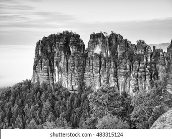 Sharp sandstone cliffs of Schrammsteine rocks above deep valley. Popular climbers resort. Deep cracks in rocks donne by strong rain erosion. Black and white photo