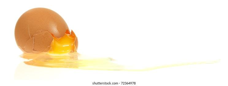 Shattered egg.