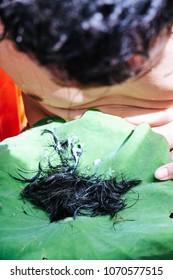 shaving the hair, Ordination Ceremony  of Buddhist monk