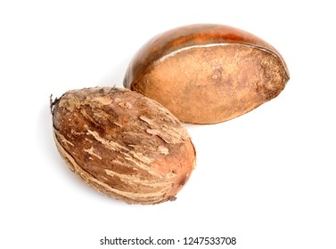 Shea butter nuts or karite fruit. Isolated on white background.
