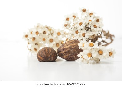 Shea butter nuts on a white background with flowers. Copy space