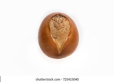 Shea nut isolated