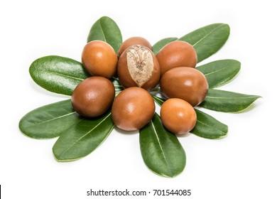 Shea nuts on leaves