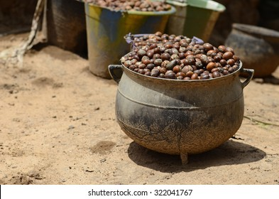 "Shea nuts to prepare butter in Bamako. The English name ""shea"" comes from sí, the tree's name in the Bamana languages of Mali. The French name ""karité"" comes from ghariti."