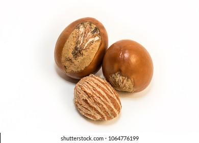 Shea nuts, Vitellaria paradoxa.