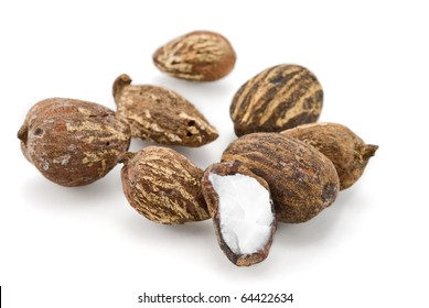 sheabutter nuts on white background