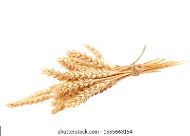 Sheaf of wheat ears isolated on a white background.