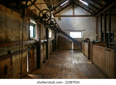 Shearing stands of an old shearing shed