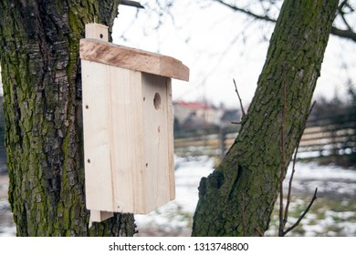 Shed for birds on trees. Wooden birdhouse on the tree.