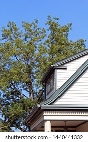 Shed roof and dentil molding architectural details on early 20th century home in Michigan against blue sky and trees.