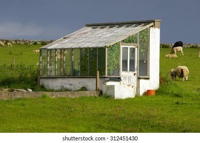 Shed, Sandwick, Orkney Islands, Scotland