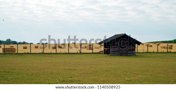 Shed surrounded by bales of hay