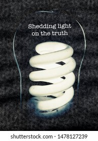 Shedding light on truth, message text, fact check concept with illuminated spiral light bulb