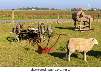 sheep an ancient agricultural machines