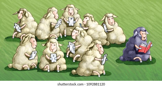 the sheep black law all the other white sheep use the jail cell