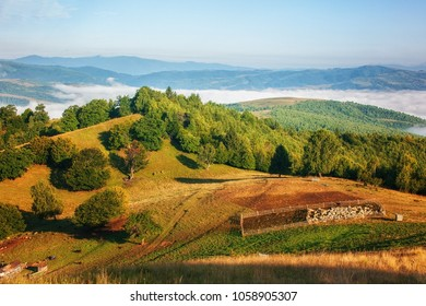 Sheep enclosure in the remote mountains of Transylvania
