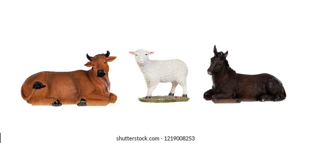 A sheep with the ox and the mule, isolated on white background
