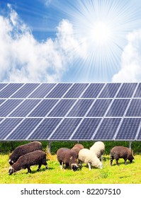 Sheep and solar energy panels against sunny sky.  Ecological farming metaphor.