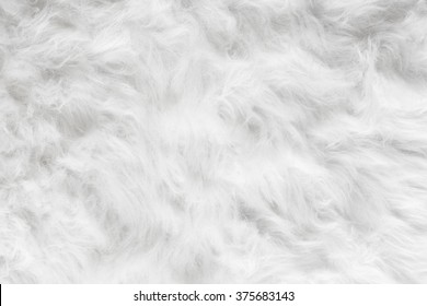 Sheep wool fur background texture wallpaper.