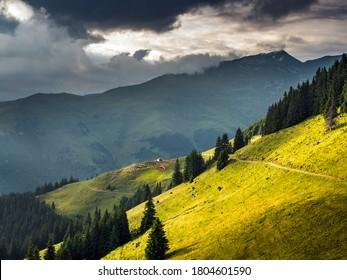 Sheepfold deep into the mountains. Carpathian mountain sheepfold.