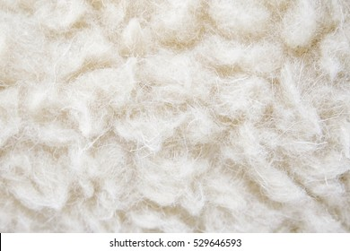 Sheep's wool. Sheep wool texture. lamb