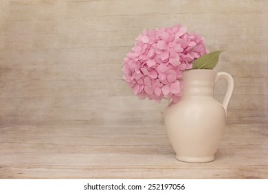 Sheer Haze Vintage Pale Pink Hydrangea on a rustic wood background with room for copy.
