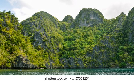 Sheer limestone outcrops with lush vegetation - Coron, Palawan, Philippines