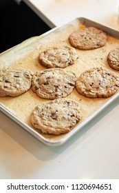 Sheet pan of freshly baked gooey chocolate chip cookies, cooling on a kitchen counter, with space for text on bottom