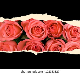 A sheet of paper with red roses