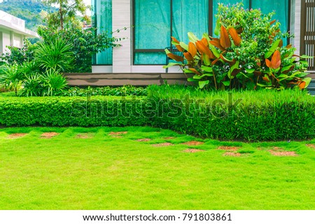 The sheet walk in the front garden of the house is beautifully designed. Green & Sheet Walk Front Garden House Beautifully Stock Photo (Edit Now ...