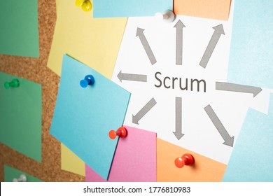 sheets of paper are hanging on the board on one of them is written a scrum arrows come from it in different directions. Scrum master work scheme