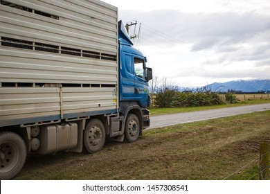Sheffield, Canterbury, New Zealand, July 13 2019: A Carrfields livestock truck travels up a rural gravel road to pick up cattle from a farm