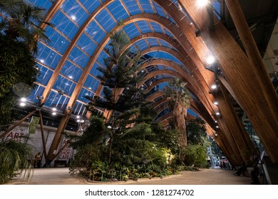 Sheffield, United Kingdom - October 5th 2018: Inside the Winter Gardens during evening, the public space is lit up to highlight the striking architecture