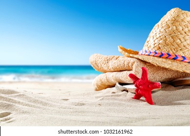 Shell decoration on sand and sea landscape