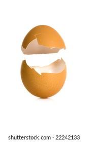 shell egg on white background