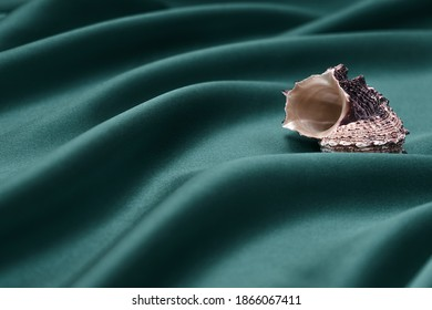 Shell on a green draped silk background.Tidewater green color of the year 2021.Creative background.Selective focus,copy space.
