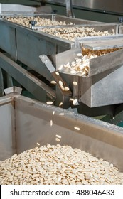 Shelled almonds in the carriage for the peeling process in a modern factory