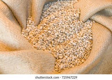 Shelled sunflower seeds in gunny sack - top view; Raw kernels of sunflowers; Birdseed; Baking ingredient; Salad topping