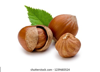 Shelled and unshelled hazelnuts and leaves isolated on white background. Macro, studio shot.