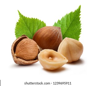 Shelled and unshelled hazelnuts with leaves isolated on white background