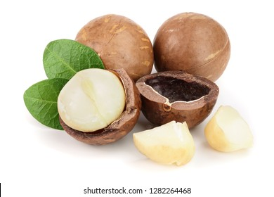 Shelled and unshelled macadamia nuts isolated on white background