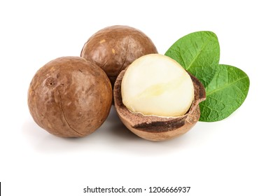 Shelled and unshelled macadamia nuts with leaves isolated on white background