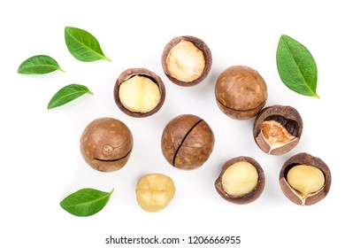 Shelled and unshelled macadamia nuts with leaves isolated on white background. Top view. Flat lay pattern