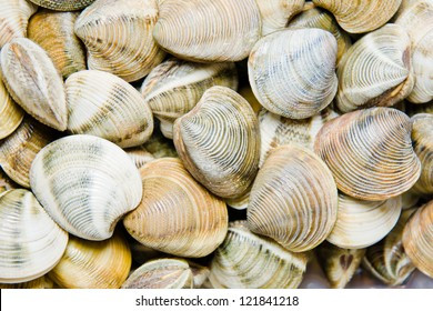 shellfish in a market