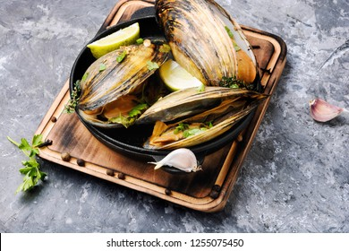Shellfish mussels in pan with lemon and herbs.Clams in the shells