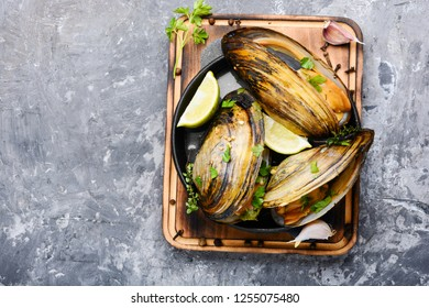 Shellfish mussels in pan with lemon and herbs.Mussels with lemon. Seafood