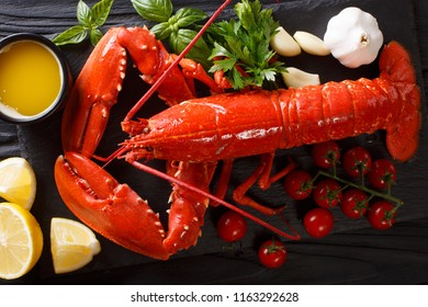 Shellfish plate of crustacean seafood with fresh boiled lobster with vegetables and herbs. gourmet dinner background. Horizontal top view from above