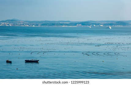 Shellfish and sea cucmber farming to the South of Changdao Island, Shandong, China. The mainland is in the distance.